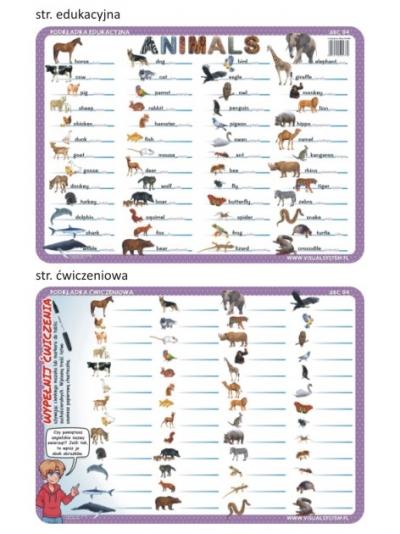Animals - edukacyjna podkładka ćwiczeniowa - ABC 04
